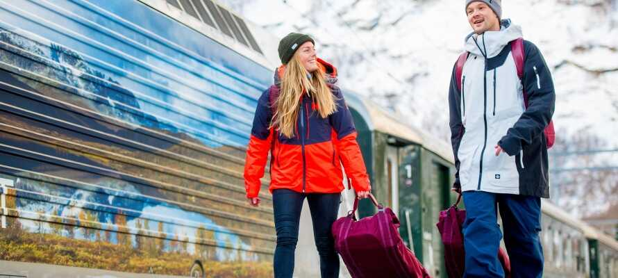 Ta en tur med Flåmsbanen, som er en av Norges største severdigheter og en av Europas bratteste jernbaner.