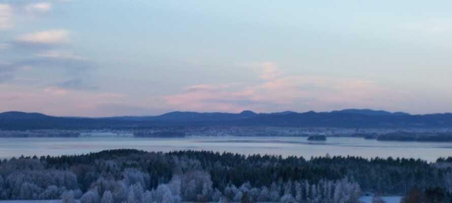 Upplev den fantastiska naturen runt sjön Siljan. Oavsett om det är vinter eller sommar är naturen lika vacker.