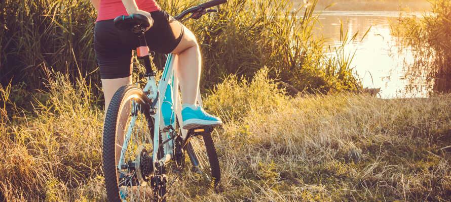 Der findes mange cykelstier i området og det smukke landskab omkring floden Elben ligger kun en halv time væk
