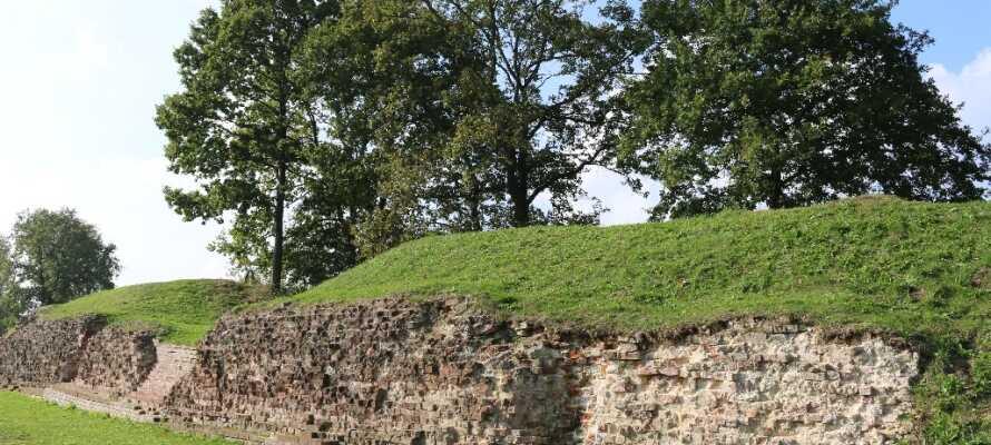 Nordens største forsvarsverk, Dannevirke, ligger bare 25 km. fra hotellet og er et interessant stykke historie.
