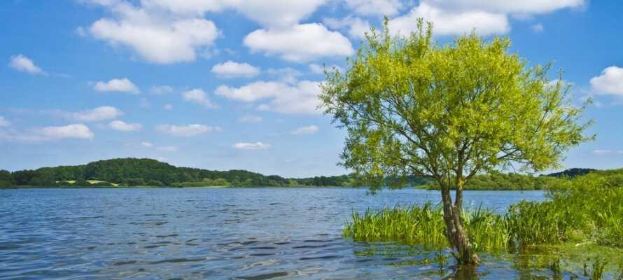 Området är känt för sina många sjöar, som skapar ett vackert sjölandskap.