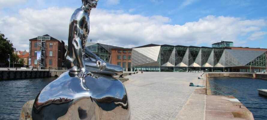 I Kulturhavn Kronborg finner dere forskjellige skulpturer, bl.a. skulpturen HAN som er inspirert av Den Lille Havfrue.