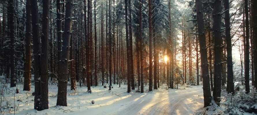 Die wunderschöne Umgebung bietet große Möglichkeiten für einen Kurzurlaub, unabhängig von der Jahreszeit.
