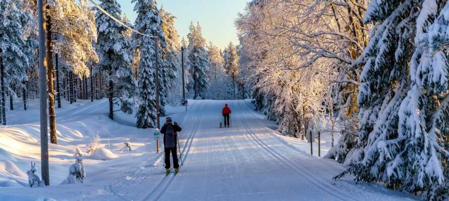 Om vinteren er der f.eks. gode muligheder for at stå på ski i Insjöns smukke omgivelser og mange langrendsspor.