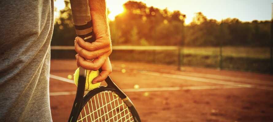 Det er mulig å spille tennis og golf samt surfe, seile, vandre og sykle i det vakre området rundt hotellet.