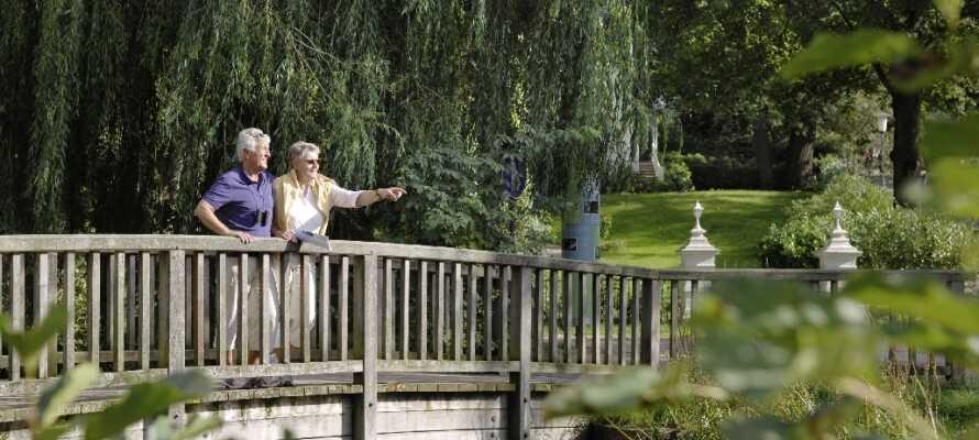 Genießen Sie einen Spaziergang durch den Kurpark Mölln mit wunderschönen Blumen, gepflegtem Rasen und vielen Bäumen.