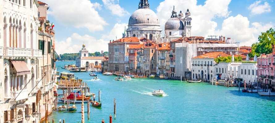 Hotellet ligger bare 45 km. fra Venezia som lett kan nåes med båt fra havnen i Treporti-området.