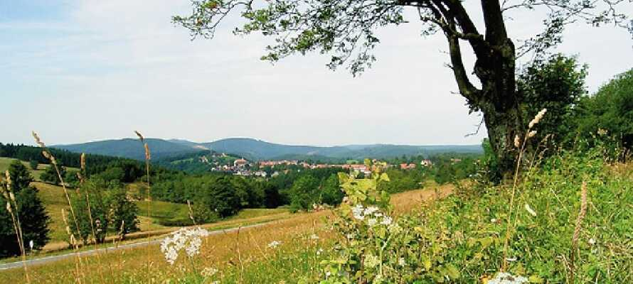 Tag på oplevelse i naturskønne Harzen.