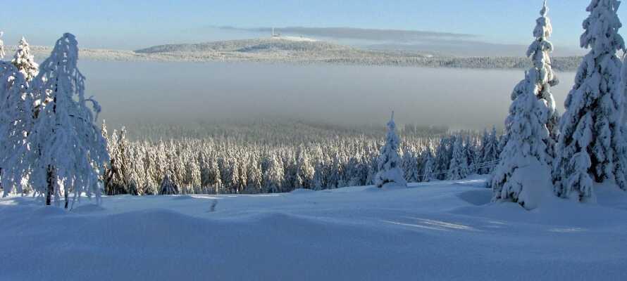Harzen er en smuk destination både sommer og vinter