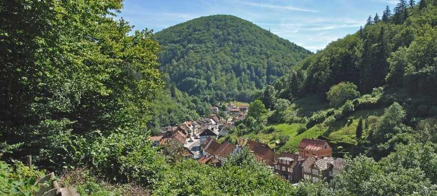 Smukke Harzen med betagende natur og frisk luft