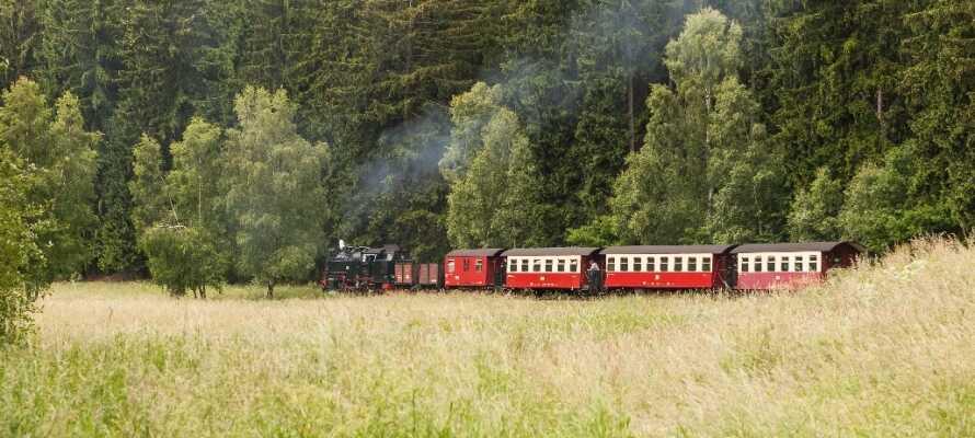 Harzen har gode vandre- og udflugtsmuligheder for både børn og voksne.