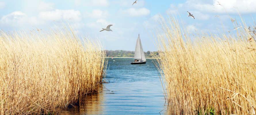 Der er ikke langt til den flotte Flensborg Fjord, hvor I kan gå en tur på stranden og nyde naturen.