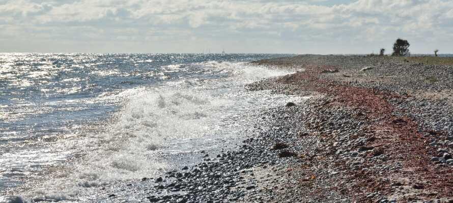 Kjør turen sørover til Langelands vakre sørspiss og ta nydelige turer langs stranden.