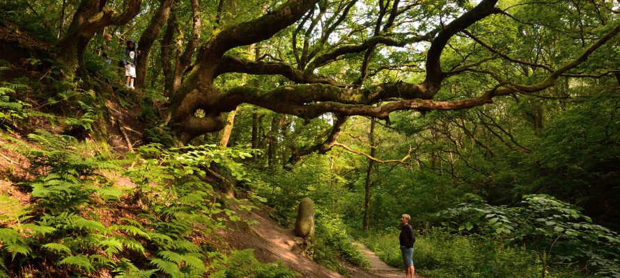 Hotellet er omgivet af herlig natur - nyd f.eks. nogle helt fantastiske vandreture i Fosdalen.