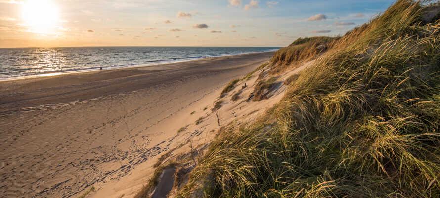 Från Montra Skaga Hotel har ni närhet till Nordsjön och vackra stränder.