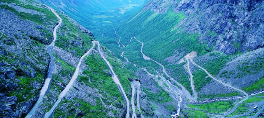 Sie können Ihre Kinder oder Enkel auf Spaziergängen in Romsdalen mitbringen. Die Wandermöglichkeiten sind zahlreich, mehrere davon sind sogar für die Kleinsten angesagt. Abgesehen davon, ist das Gebiet auch für seine erstaunliche Spitzen bekannt.