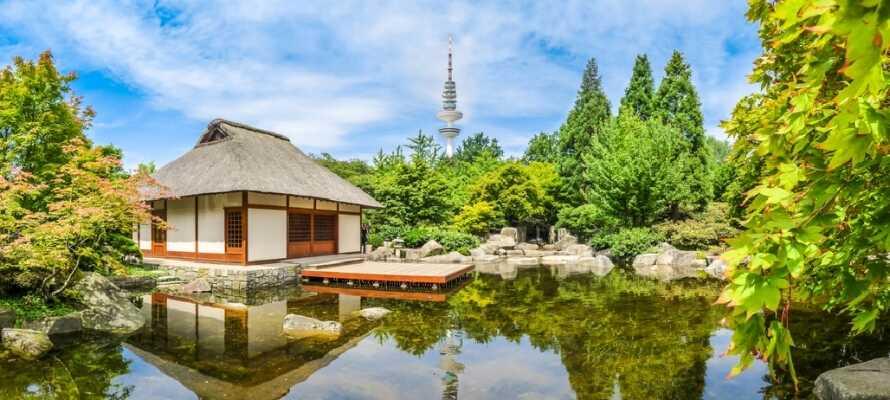 Hamburg ist eine große Stadt voller grüner Oasen, wie dem japanischen Garten, wo Sie einen ruhigen Moment genießen können.