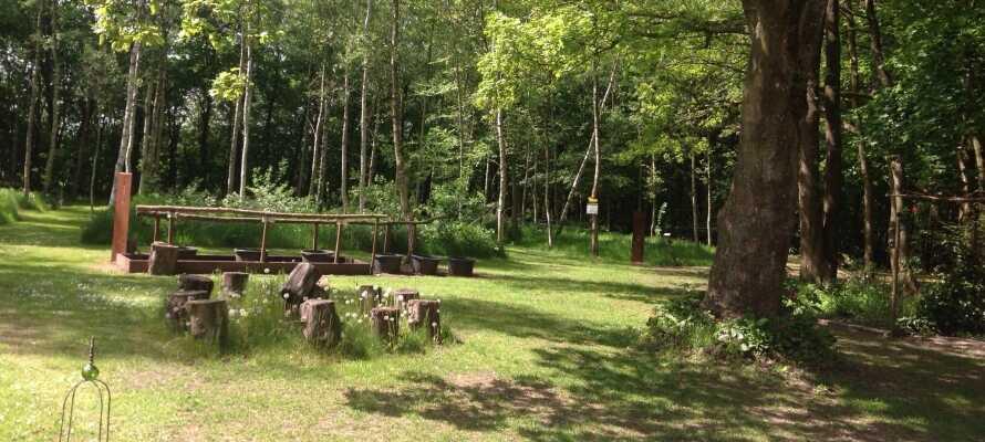 I kort afstand fra hotellet ligger Klovtoft Kurklinik og Barfodspark, som byder på sanseoplevelser og wellness.