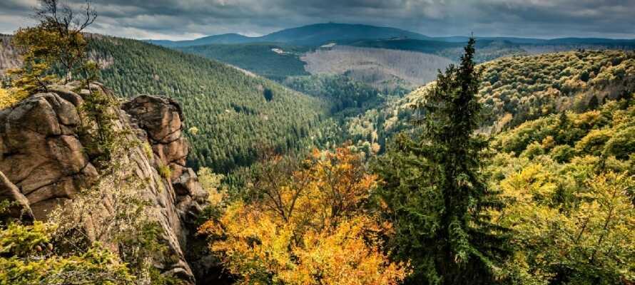 Nationalparket Harz har över 300 kilometer vandringsleder med otroliga vyer.