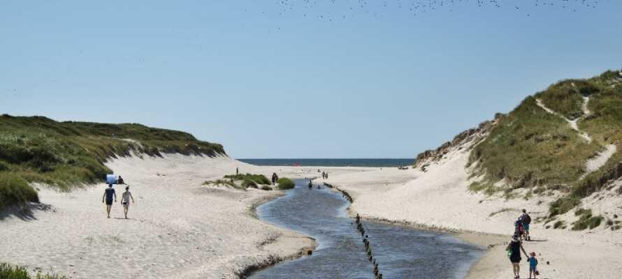 Tilbring en dag ved Vesterhavet, hvor dere kan gå langer turer ved vannet eller bare nyte det fine været og den friske havluften på stranden om sommeren.