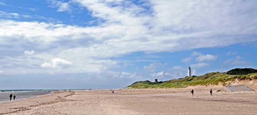 Ta en tur ut til Vesterhavet og se Blåvandshuk Fyr, nyt livet på stranden eller gå på oppdagelsesferd i sanddynene.