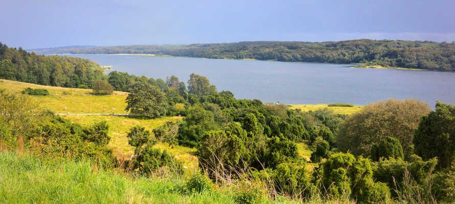 Fra hotellet er du bare en kort spasertur til Mariagerfjorden, med sin sjarmerende marina og vakre natur.