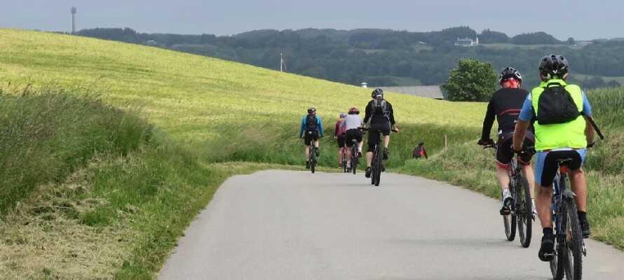 Frederikshavns schöne Landschaft und die langen Küsten laden zum Wandern und Radfahren ein.