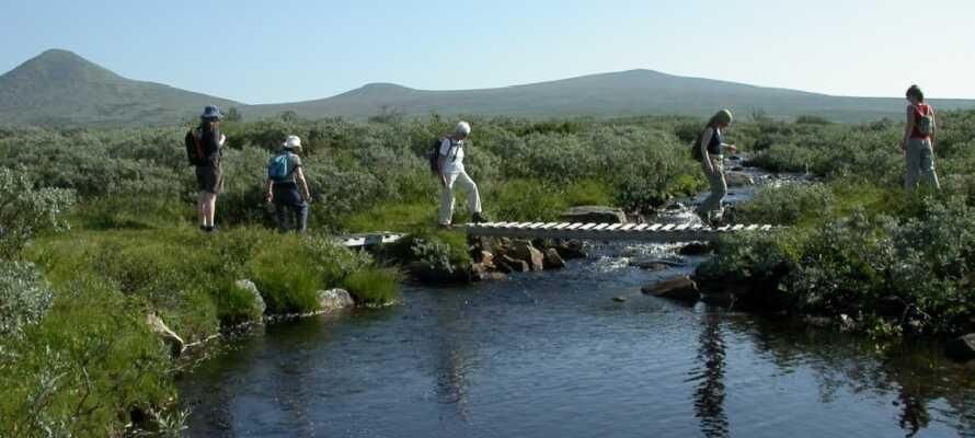 Et skønt område til vandreture både om sommeren og vinteren og flittigt besøgt de lokale.