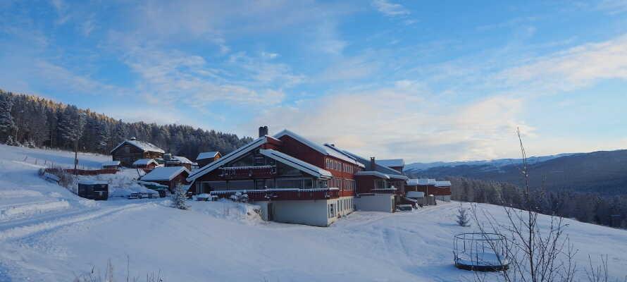 Om vinteren er det massevis av muligheter til å boltre seg i snøen mens dere bor på Lia Fjellhotell.