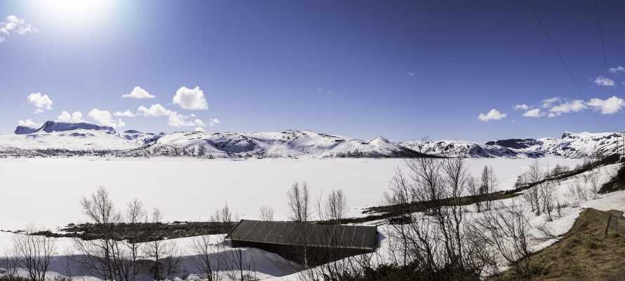 Wenn die Sonne scheint und die Natur Ihr Winterkleid trägt, ist Norwegen ganz einfach ein wunderbarer Ort, um dort Urlaub zu machen.