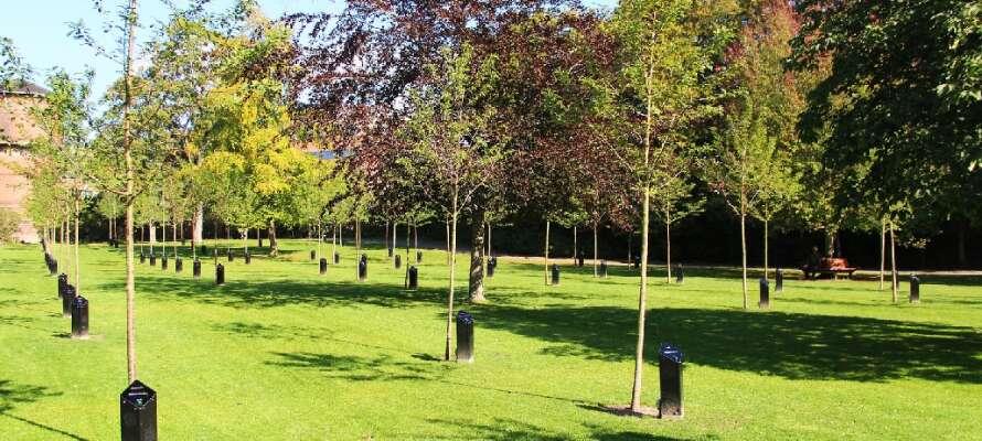 Dette 4-stjernede hotel ligger lige ved Kildeparken med de syngende træer, tæt på Aalborgs levende centrum.