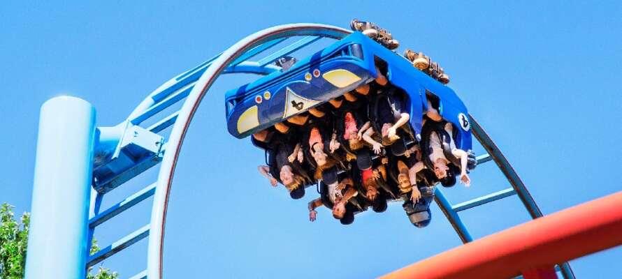 Tag med hela familjen till BonBon-land och upplev massor av roligt - en hit för både barn och vuxna!
