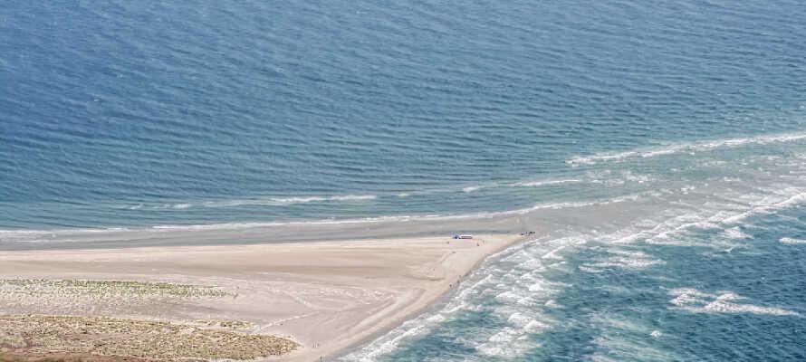 Begi dere ut til spissen av Danmark, Grenen, hvor havene møtes.
