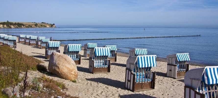Oplev den skønne natur i området Mecklenburg-Vorpommern, hvor hotellet ligger.