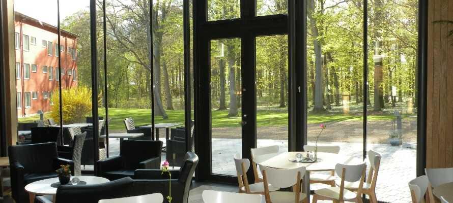 Frokosten serveres i en stor, lys spisesal med utsikt innover den vakre parken utenfor de store vinduene.
