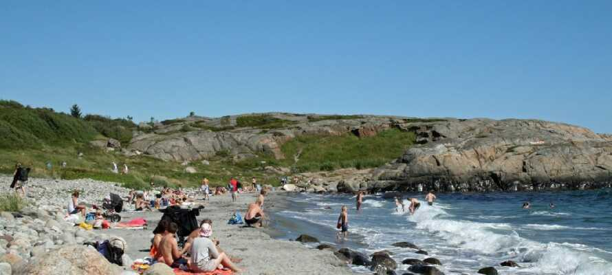 Området byder på mange naturoplevelser; besøg Nationalparken og tilbring en dejlig eftermiddag på stranden.