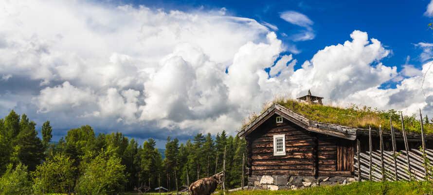 Besök Maihaugen, Norges största friluftmuseum. Här finns vackra hus från en annan tidsepok.