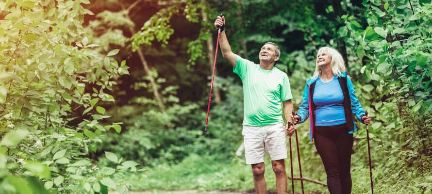 Tag del av områdets aktivitetsutbud av fiske, kanot- och kajakpaddling, cykling och vandring.