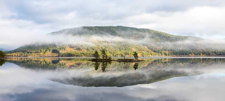 Byglandsfjorden er 34 kilometer lang og er en del af Otravassdraget. Nyd naturen og slap af i de idylliske omgivelser.