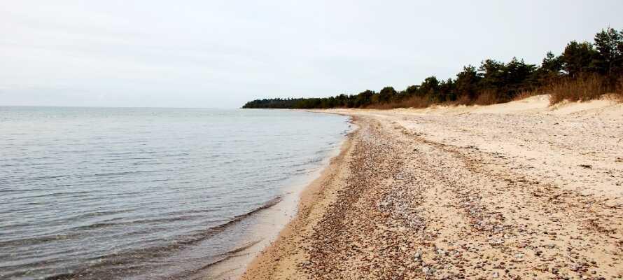 Fra hotellet er der kun 1,5 km til stranden, hvor I kan gå lange ture i den friske havluft.