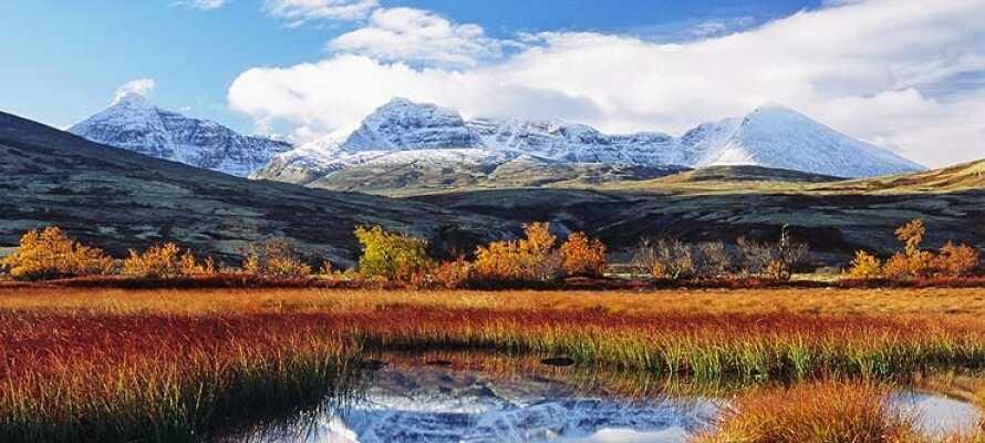 Erleben Sie die raue Landschaft und staunen Sie über die vielen Wasserfälle, die mit großer Kraft die Landschaft durchpflügen.