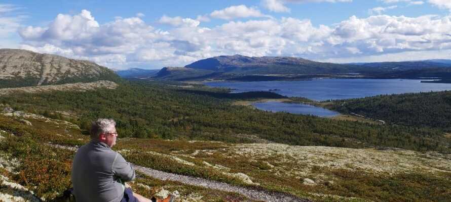 Die Natur ist das zentrale Thema dieser schönen Region in Norwegen.
