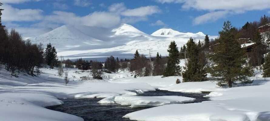 Das Hotel liegt in wunderschöner Umgebung am Fuße des Rondane Nationalparks.