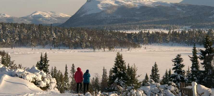 Die zauberhafte Winterlandschaft bietet viele tolle Erlebnisse und Aktivitäten wie z. B. Langlauf.