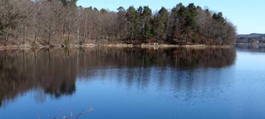 Utforsk naturen ved Bredaredssøen. Området byr både på gåturer, fisking og idylliske båtturer på sjøen.