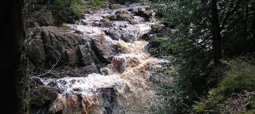 """""""Danska Fall"""" er navnet på et vandfald og et naturreservat i Bredareds og Tönnersjö sogne i Halmstad."""