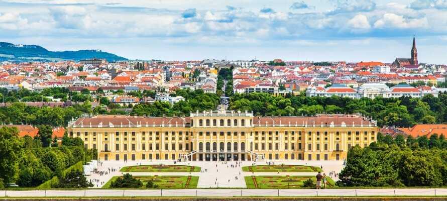 Se Schloss Schönbrunns magnifika barockpalats med dess trädgårdar. Slottet ligger nära hotellet.