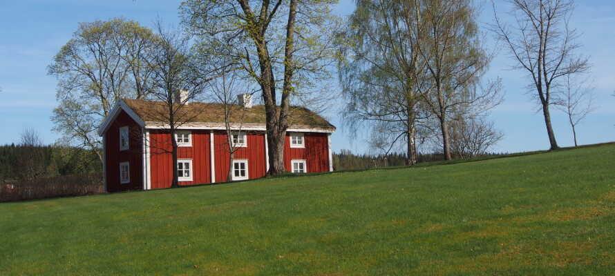 Besøg friluftsmuseet Ekomuseum Bergslagen, og lær mere om Ludvikas historie.