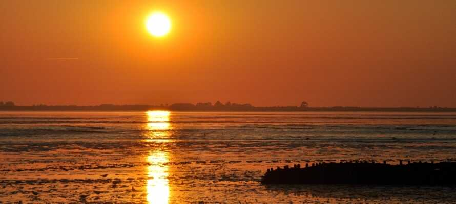 Malerische Sonnenuntergänge am Holsteiner Wattenmeer - perfekt für einen romantischen Urlaub für 2.