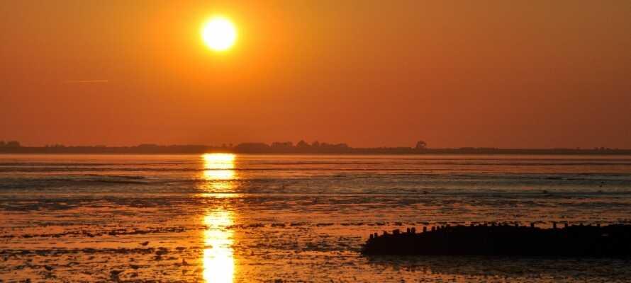 Gå en romantisk kveldstur land stranden med den maleriske solnedgangen i bakgrunnen.